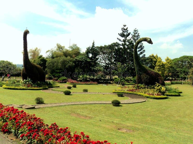 Dino Garden lizenzfreie stockfotos