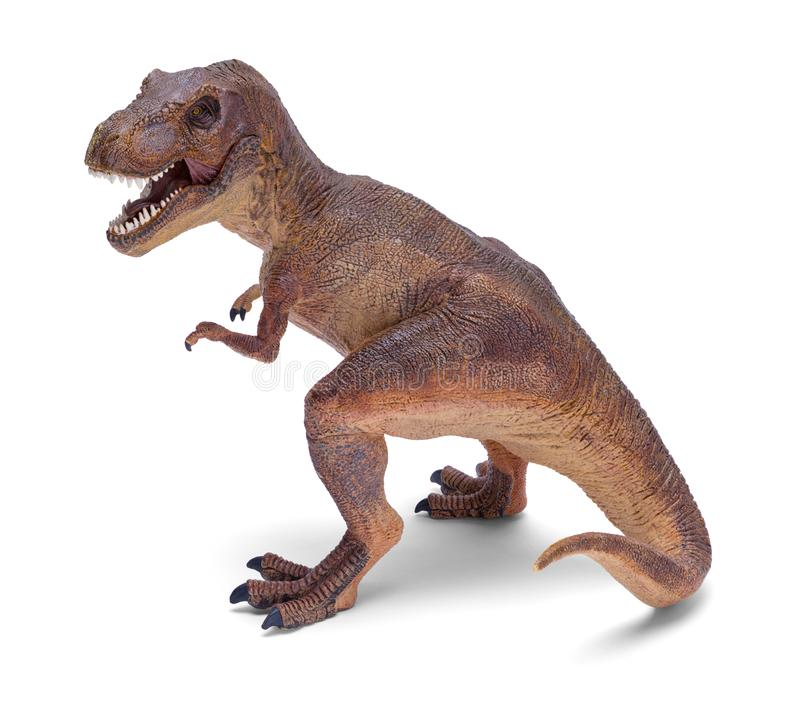Dino T Rex obrazy royalty free