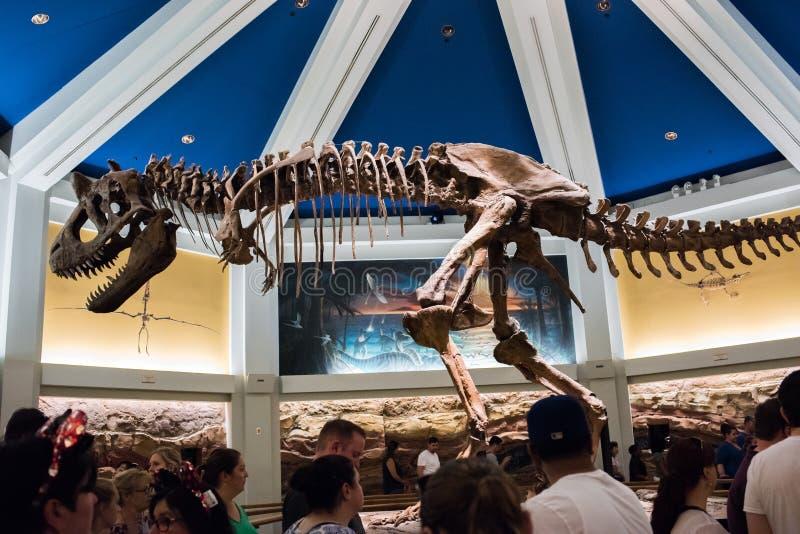 DinoLand U S a au règne animal chez Walt Disney World images stock