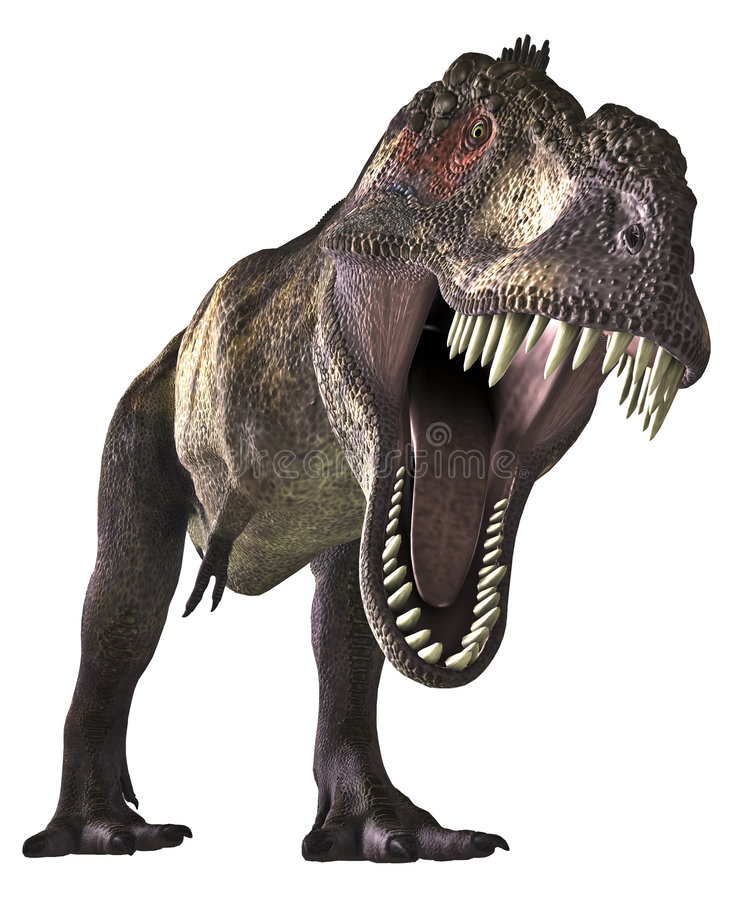 Dinos-TRex - 001 royalty free stock photo