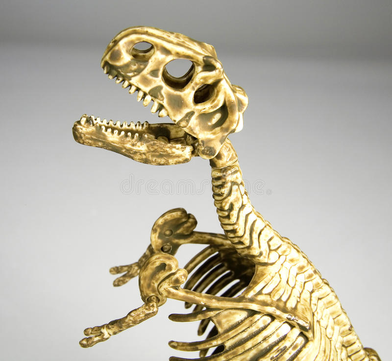 Download Dinosaur stock photo. Image of antiquity, obselescence - 13900266