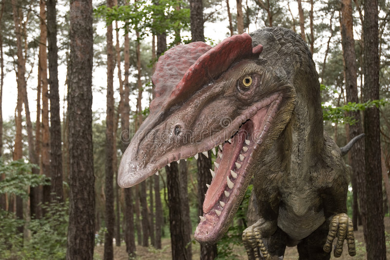 Download Dinosaur stock image. Image of jurassic, archeology, fossil - 6480051