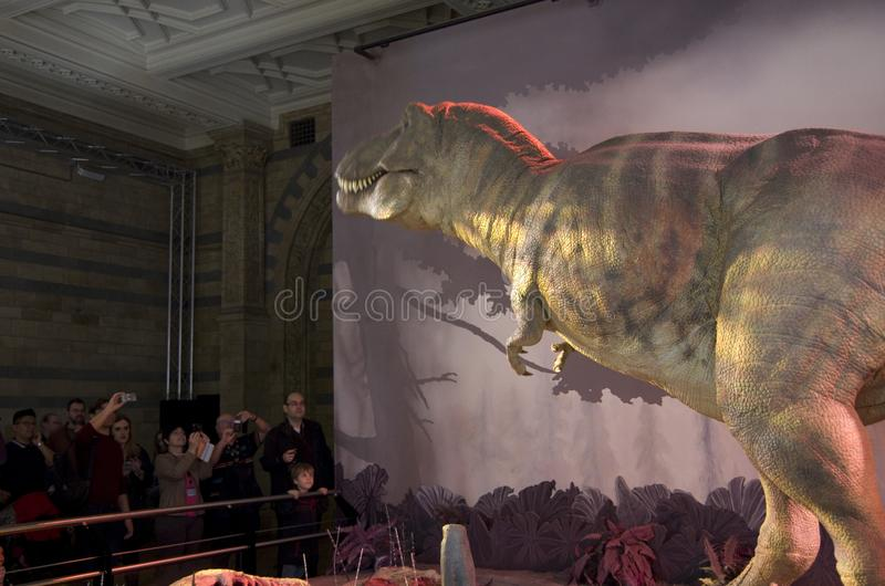 Dinosaur imitation Natural History Museum London. A Dinosaur could move and cried in the Natural History Museum of London stock images