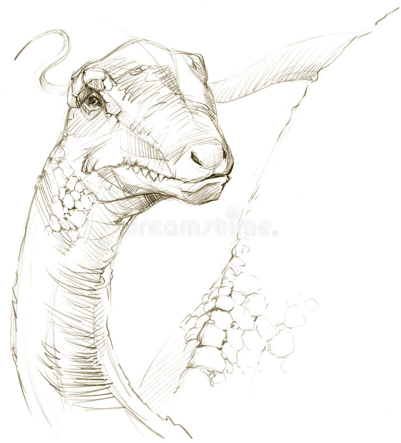 dinosaur croquis de crayon de dessin de dinosaure illustration libre de droits