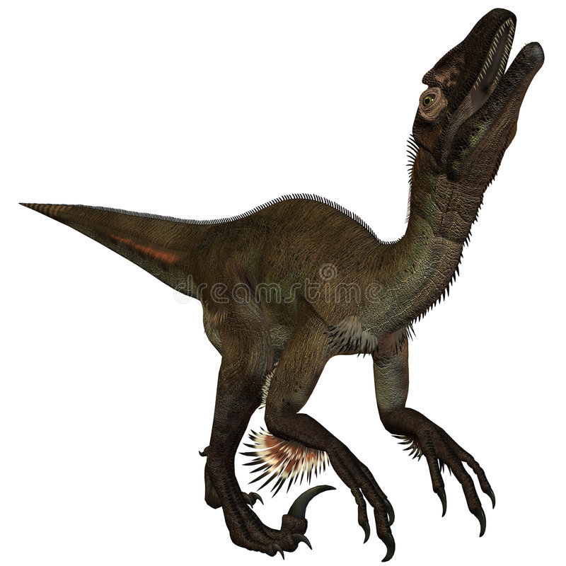 Dinosaur d'Utahraptor ostrommayorum-3D illustration libre de droits