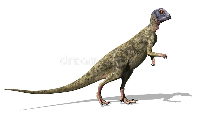 Dinosaur de Hypsilophodon illustration de vecteur