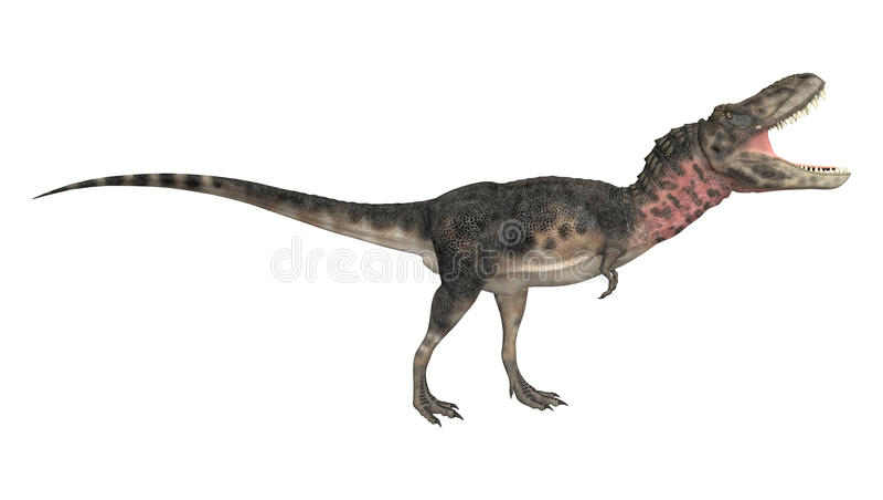 dinosaur för clipping 3d över white för tarbosaurus för banaframförandeskugga vektor illustrationer