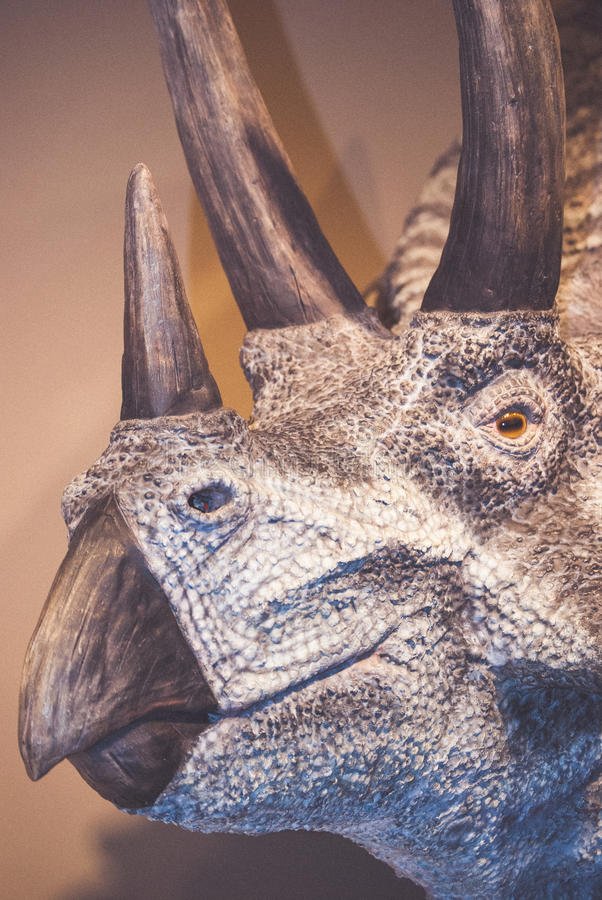 Dinosaur head. With scales and bones against brown wall stock photography