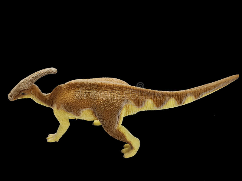 Dinosaur. Isolated dinosaur in black background royalty free stock photography
