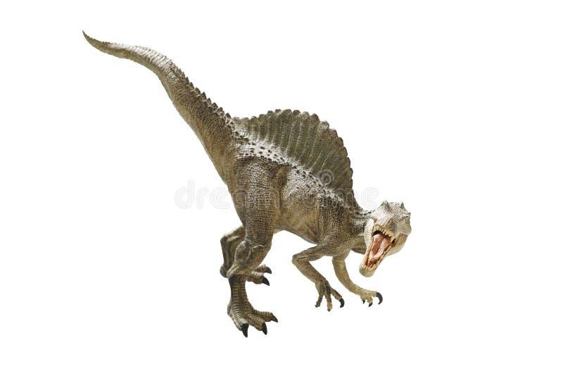 Dinosaur. Isolated dinosaur on write background stock photography