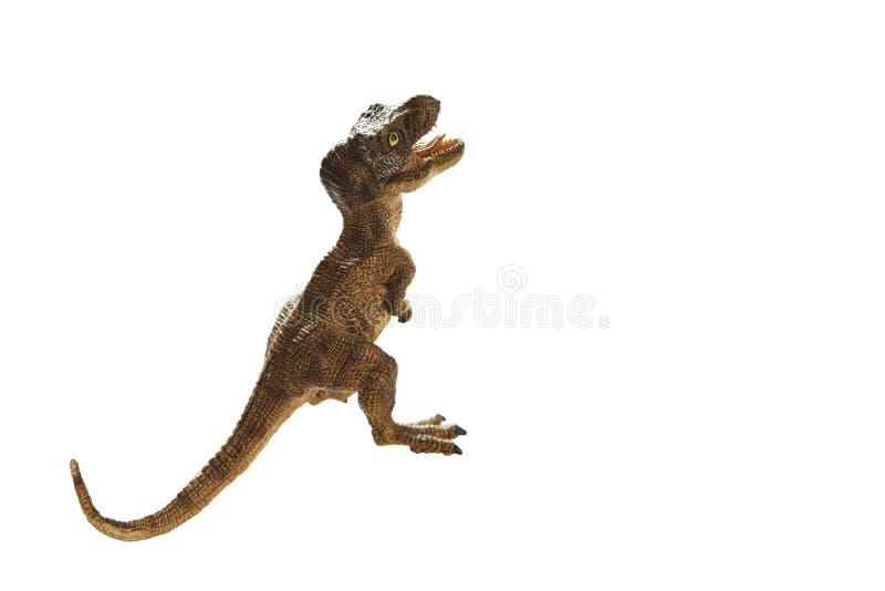 Dinosaur. Isolated dinosaur on write background royalty free stock photo