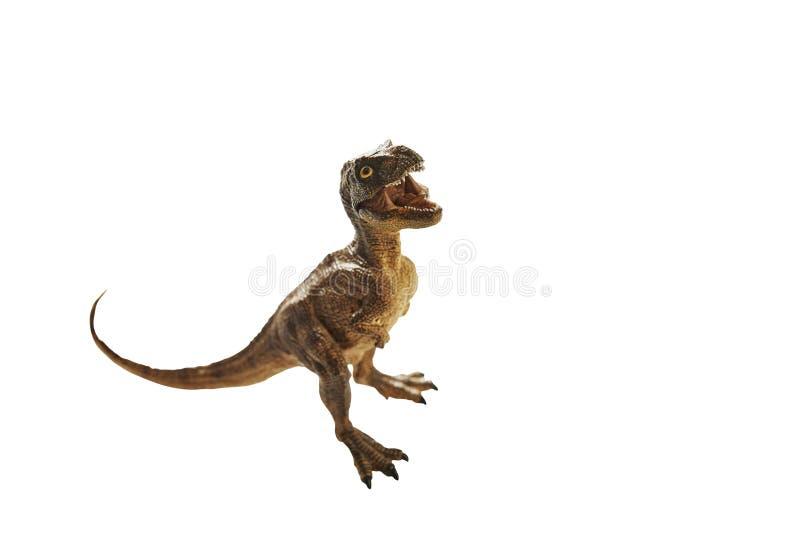 Dinosaur. Isolated dinosaur on write background royalty free stock photography