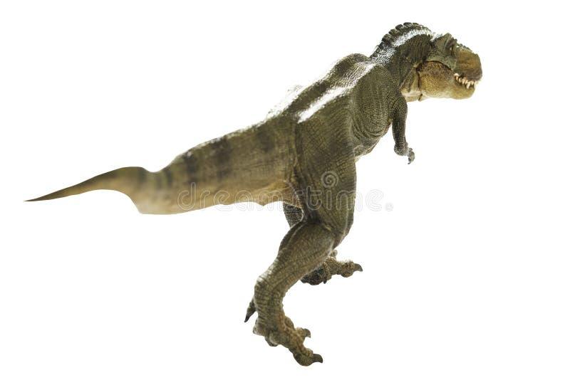 Dinosaur. Isolated dinosaur on write background royalty free stock photos