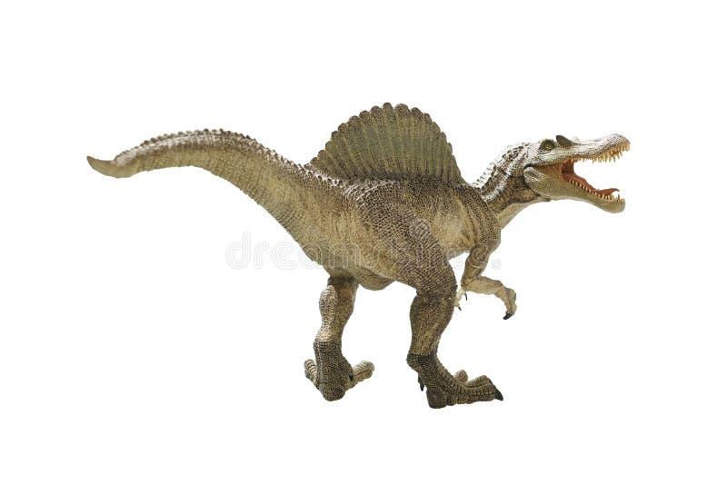 Dinosaur. Isolated dinosaur on write background royalty free stock images