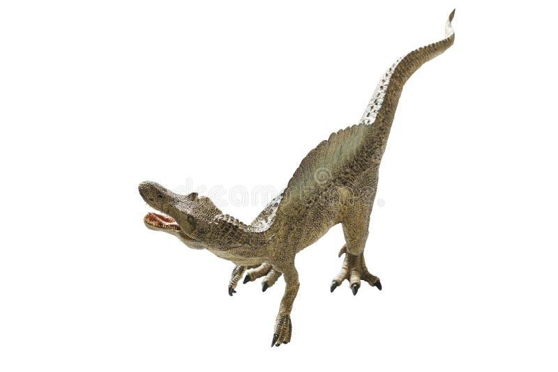 Dinosaur. Isolated dinosaur on write background stock photo