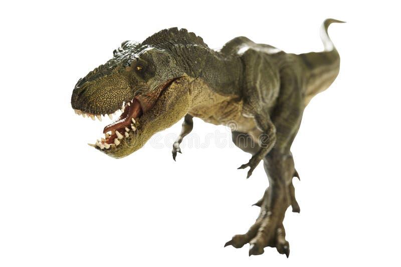 Dinosaur. Isolated dinosaur on write background stock image