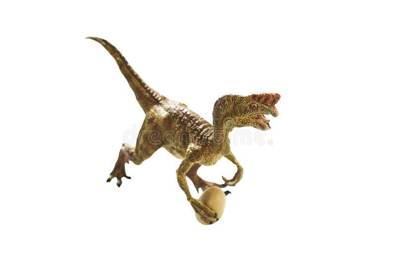 Dinosaur. Isolated dinosaur on write background stock images