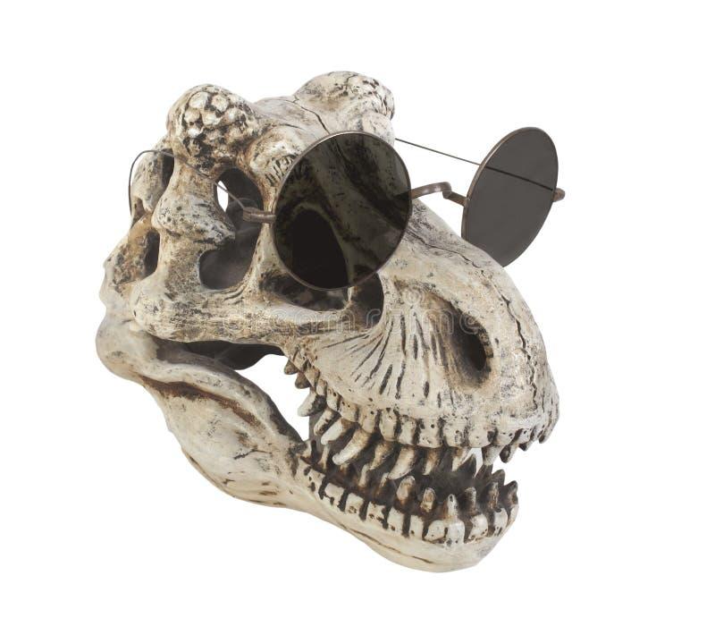 Dinosaur jest ubranym okulary przeciwsłoneczne odizolowywających obraz royalty free