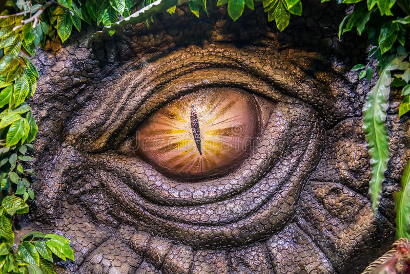 Dinosaur. Look at the dinosaur's eye