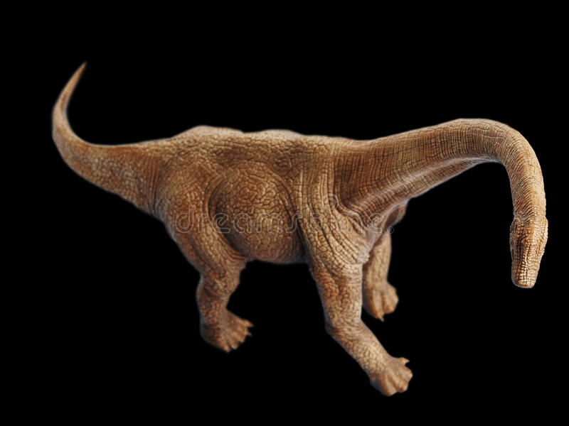 Dinosaur. Shooting dinosaur in black background stock image