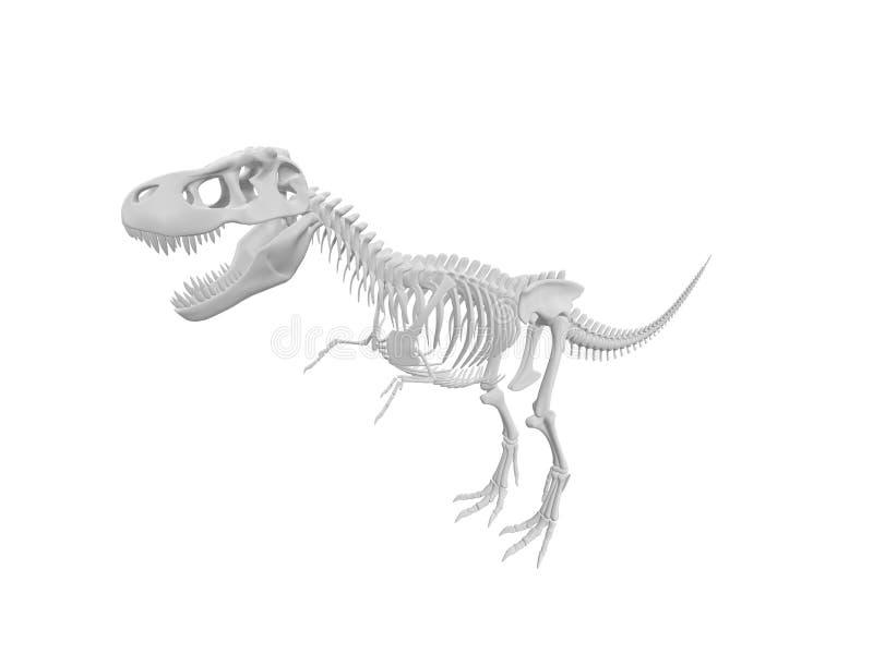Download Dinosaur skeleton stock illustration. Illustration of extinct - 22371182