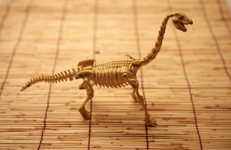 Dinosaur skeleton. On a bamboo mat royalty free stock image