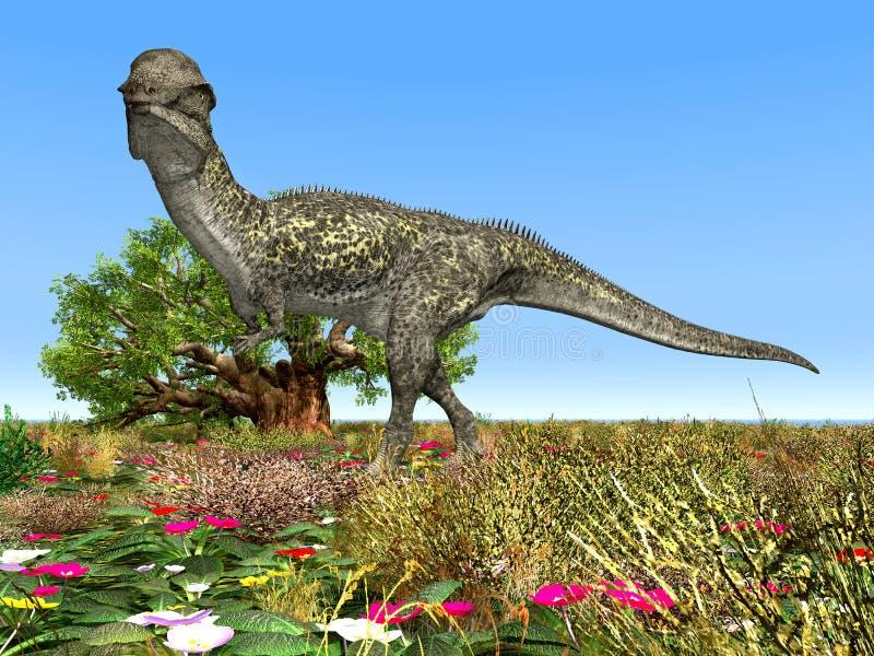 Dinosaur Stegoceras Stock Photography