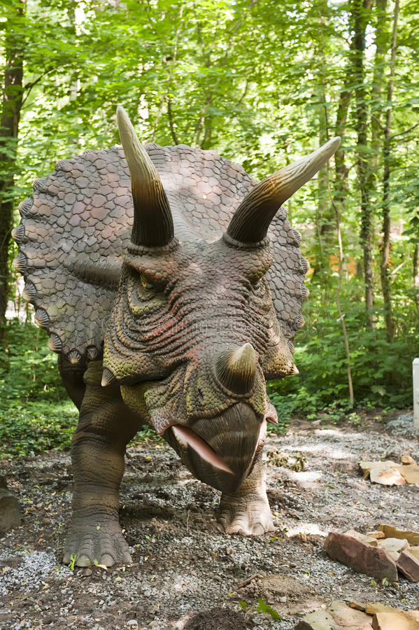 Dinosaur - Triceratops. In the forest royalty free stock photography