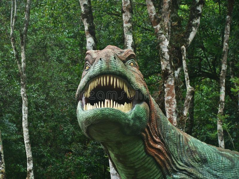 Dinosaur, Tyrannosaurus, drzewo, las zdjęcia royalty free