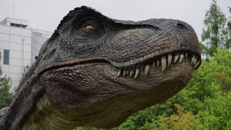 Dinosaur, Tyrannosaurus, Velociraptor, Ziemny zwierzę fotografia royalty free