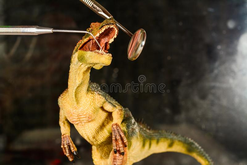 Dinosaur velociraptor examine teeth with dental mirror and probe. The concept of dental care. Toy dinosaur at the. Dinosaur velociraptor examine teeth with royalty free stock image