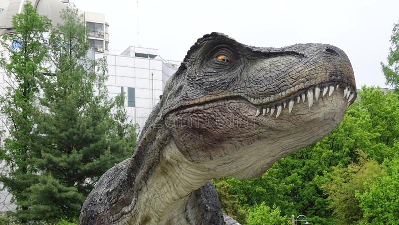 Dinosaur, Velociraptor, Tyrannosaurus, drzewo zdjęcia royalty free