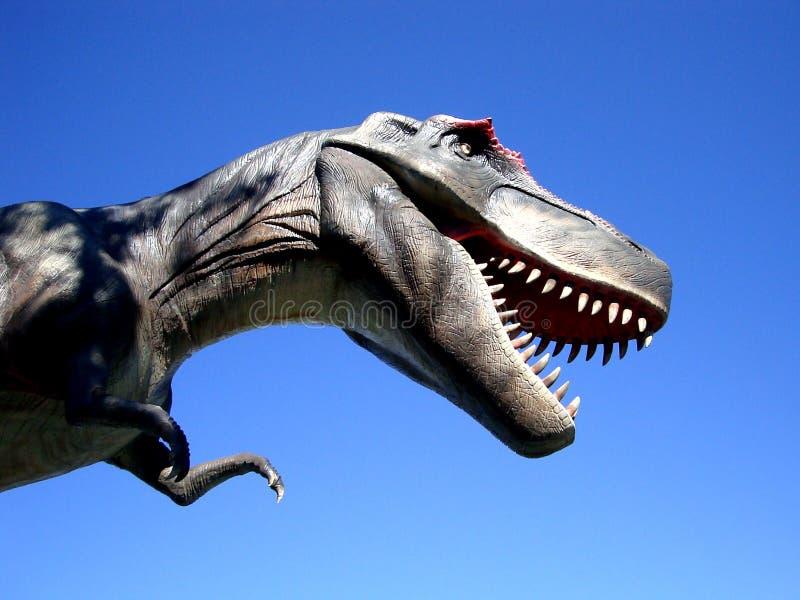 Dinosaur w teraźniejszym czasie Australia zdjęcia royalty free