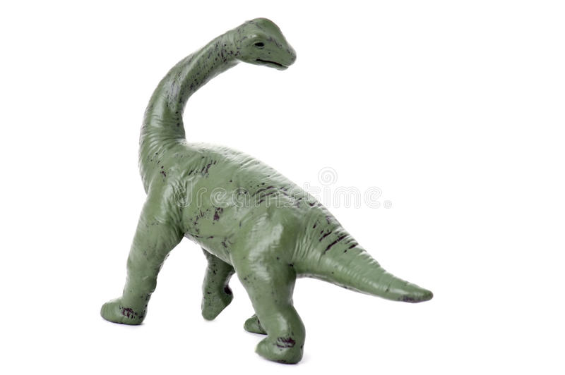 Download Dinosaur on white stock photo. Image of paleontology - 11585894
