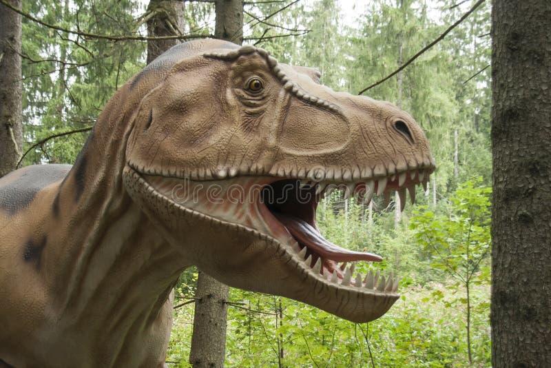 Dinosaur, Ziemny zwierzę, fauna, Tyrannosaurus obrazy royalty free