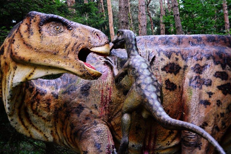 Dinosaur, Ziemny zwierzę, Velociraptor, organizm obrazy royalty free