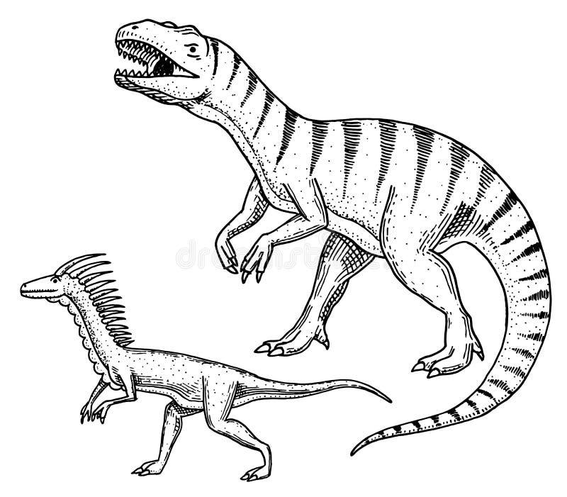 Dinosaura Tyrannosaurus rex, Velociraptor, Ceratosaurus, Afrovenator, Megalosaurus, Tarbosaurus, Struthiomimus koścowie royalty ilustracja