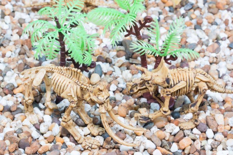 Dinosaura zabawkarski kościec obrazy stock