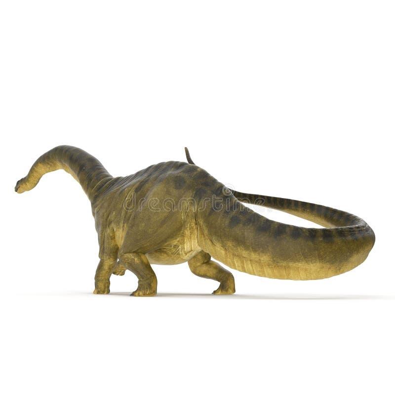 Dinosaure d'Apatosaurus sur le blanc illustration 3D illustration de vecteur