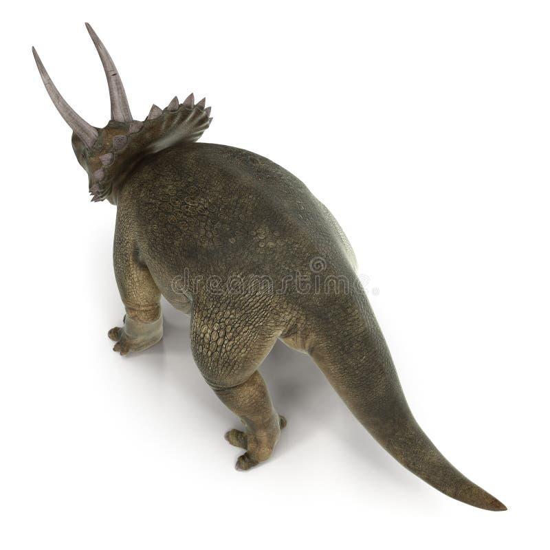 Dinosaure de Triceratops sur le blanc illustration 3D illustration libre de droits