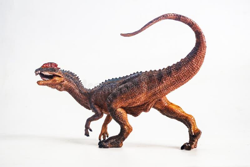 Dinosaure, Dilophosaurus sur le fond blanc image stock