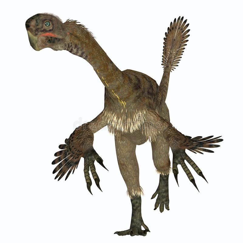 Dinosaure femelle de Citipati sur le blanc illustration libre de droits