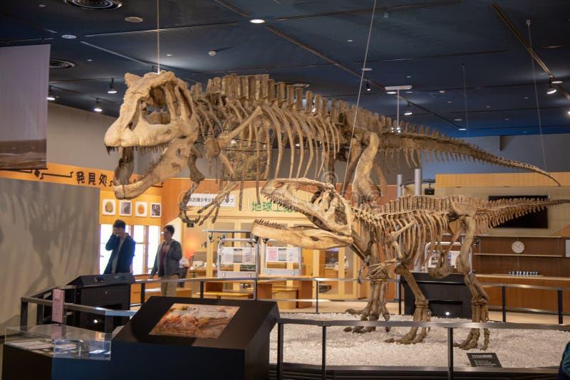 Dinosaure fossile dans le musée du Japon image libre de droits