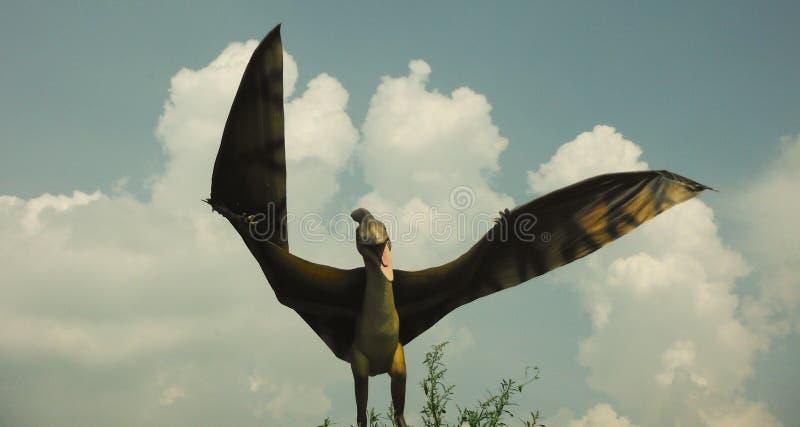 Dinosauri - pterodattilo Parco del dinosauro fotografia stock libera da diritti