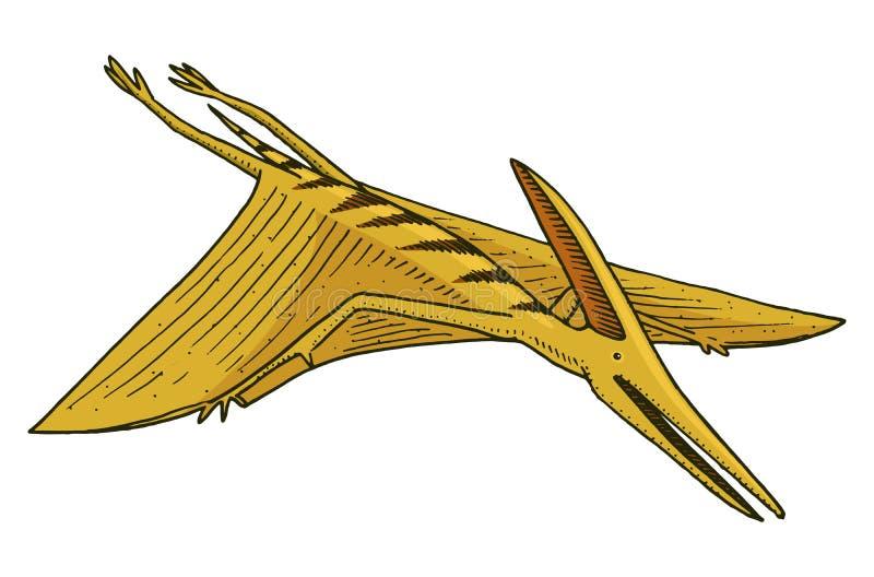 Dinosaurie Pterosaur, skelett, fossil, bevingad ödla Amerikanska förhistoriska reptilar, det Jurassic djuret inristade handen vektor illustrationer