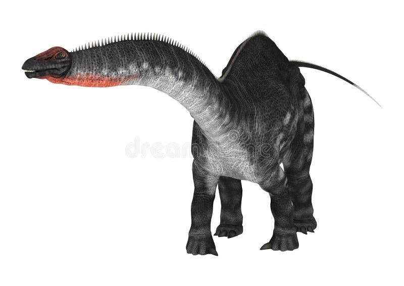 DinosaurieApatosaurus på vit royaltyfri illustrationer