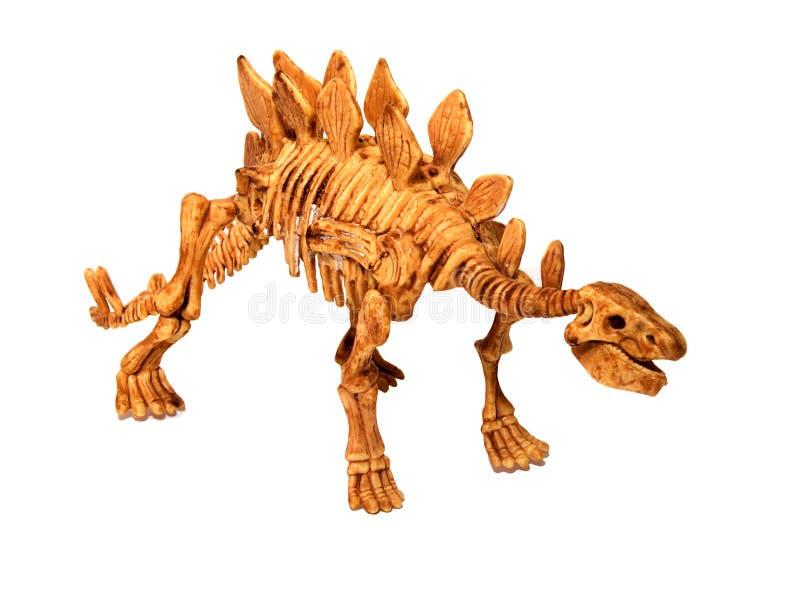 Dinosaurieben royaltyfri foto