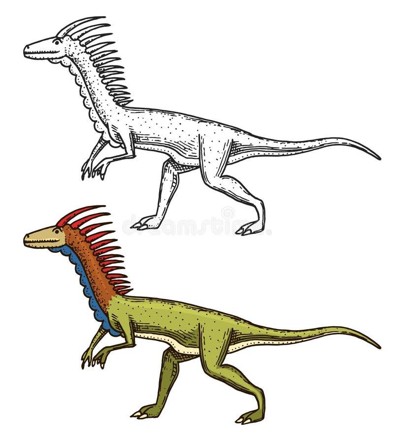 Dinosauriedeinonychus, skelett, fossil Förhistoriska reptilar, djur den inristade handen som dras i gammalt, skissar stock illustrationer