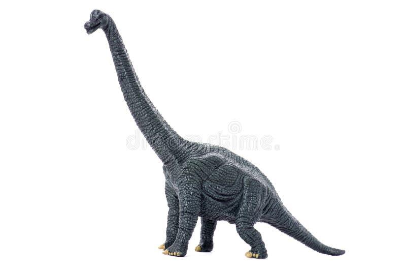 Dinosaurier auf weißem Hintergrund stockfotos
