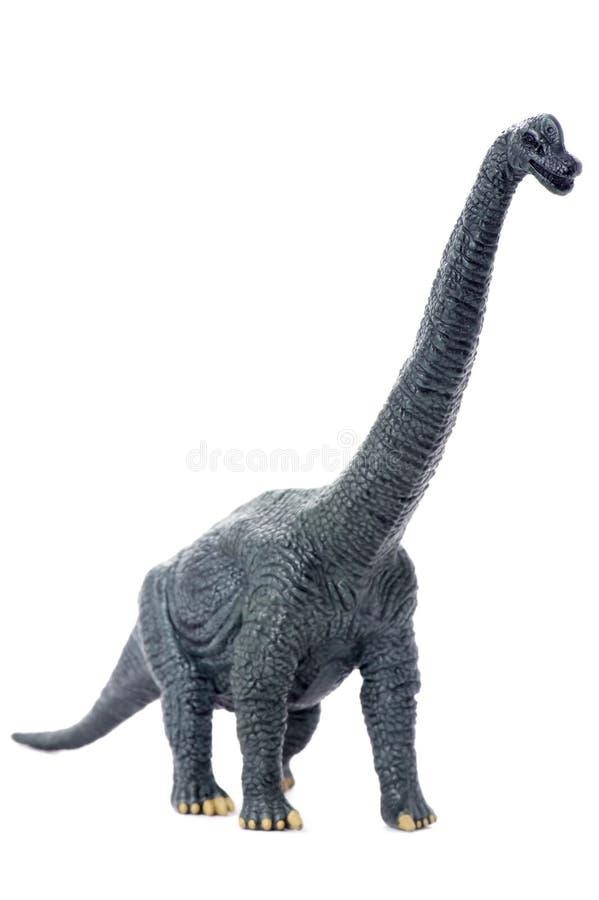Dinosaurier getrennt auf Weiß stockfotografie